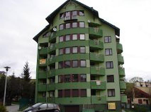 Apartament Wszelkie wygody - Krynica-Zdrój - Byt