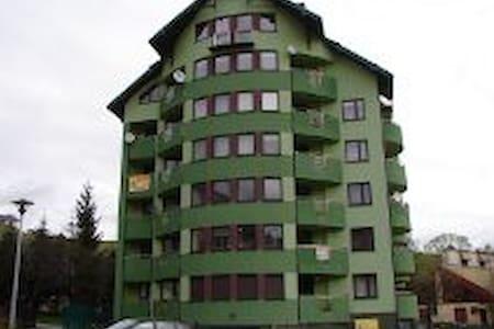 Apartament Wszelkie wygody - Krynica-Zdrój - Appartement