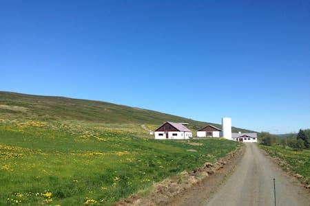 Fremstafell, North Iceland ap.nr. 1 - Ljósavatnshreppur