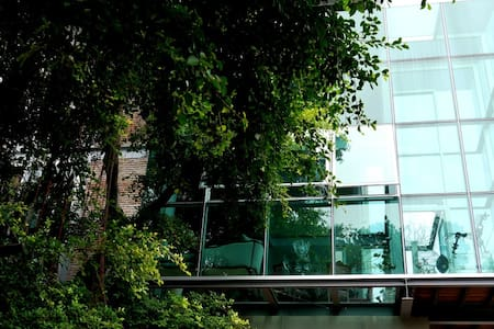 Bangkok's Ultimate Glass Tree House - Bangkok