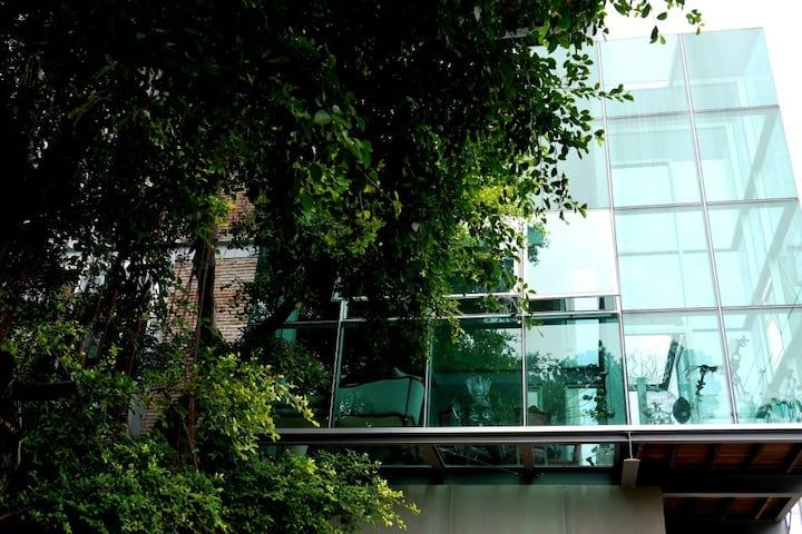 Bangkok's Ultimate Glass Tree House