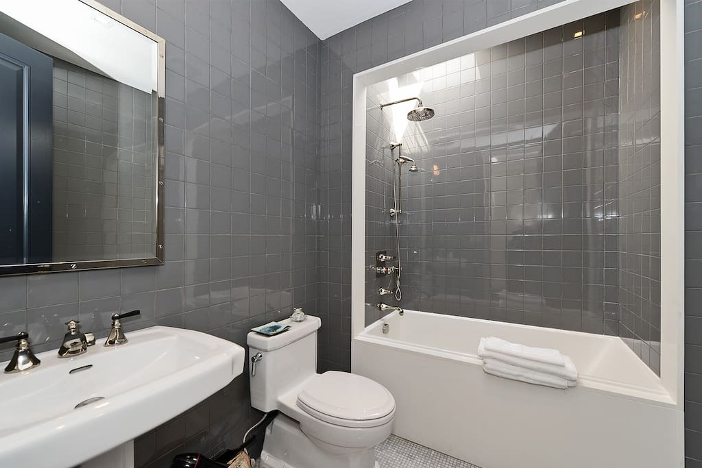 Main bathroom with shower, and tub - under a built in skylight.