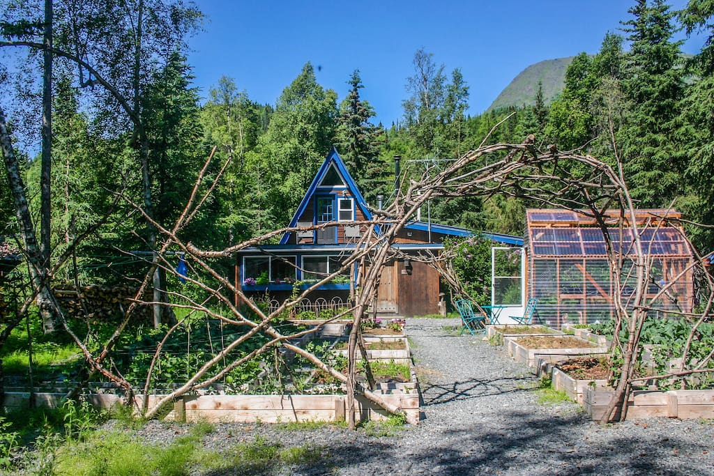 Kenai river cottage riverfront houses for rent in for Cooper landing fishing