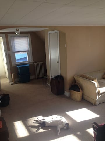 Cute adorable apartment -pope week - Upper Gwynedd - Apartment
