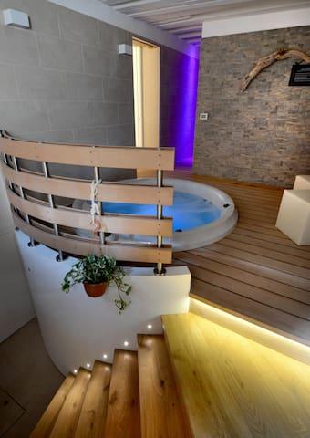 wellness room with Jacuzzi mini-pool