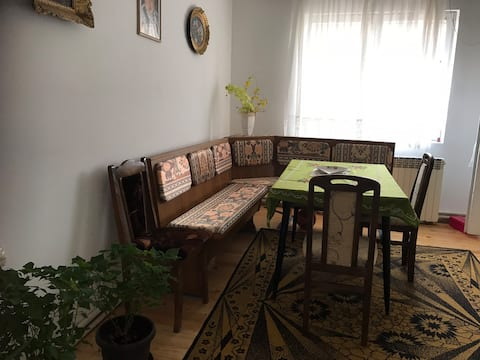 Podgorac, Serbia - Single family home near Rtanj