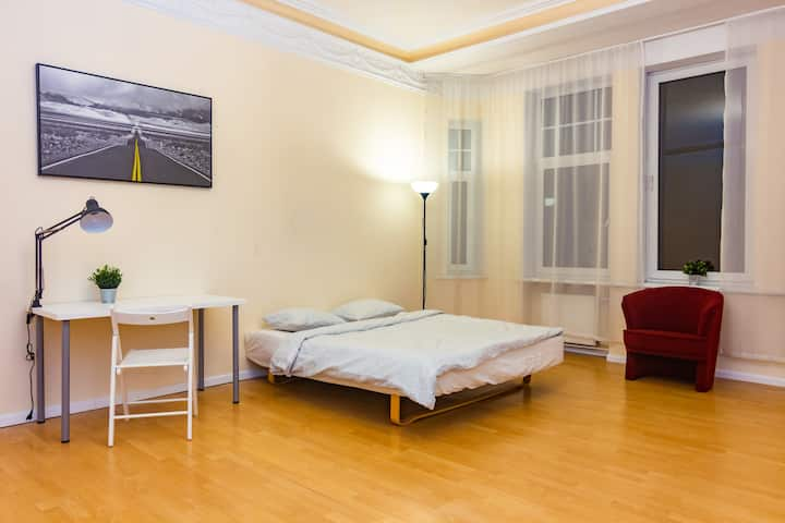 Spacious ROOM in comfortable apartment