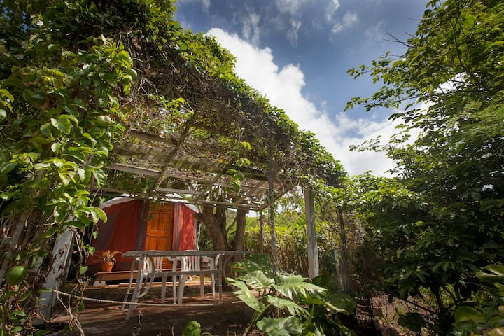 Secret Garden Yurt Over the Bay - Kaneohe - Yurt
