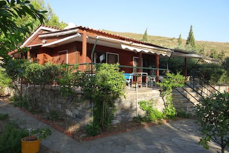 Wood beach front house with spacious garden - Marmari - Appartement