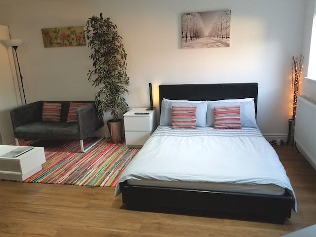 Deluxe Studio room with ensuite & private entrance
