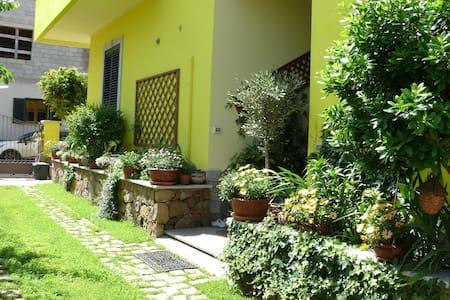 Lovely flat in Northern Sardinia B - Valledoria