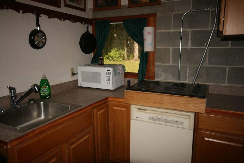 Kitchenette with stove top and dishwasher