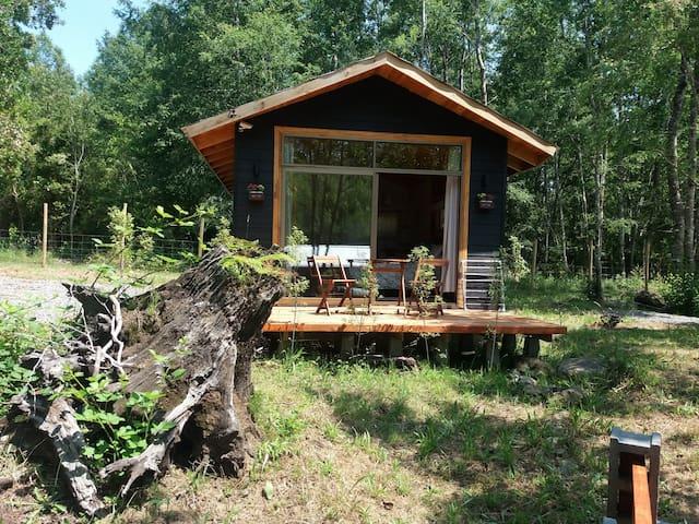Cabaña para 2 en medio de bosque nativo