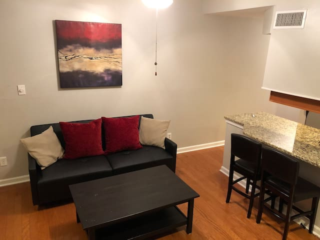 2 bd, 2 bth Midtown Condo next to Piedmont Park