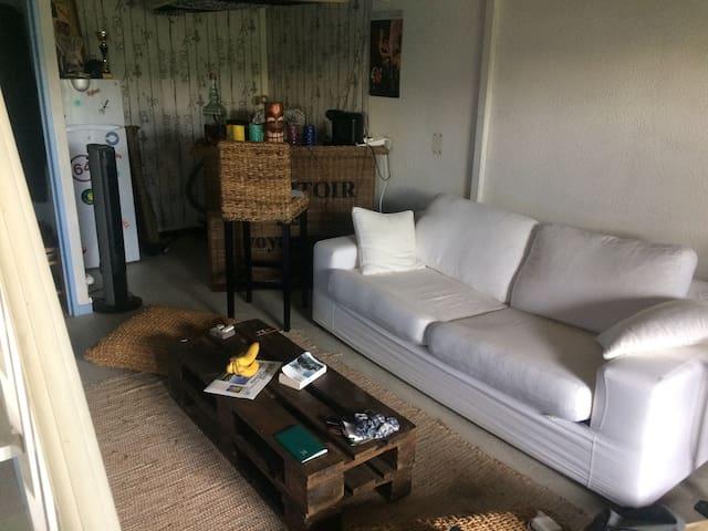 Bel appartement au Penon