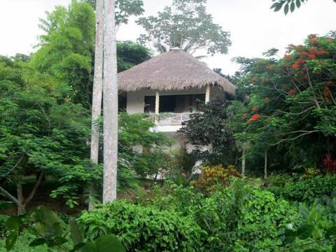 location villa Bambou