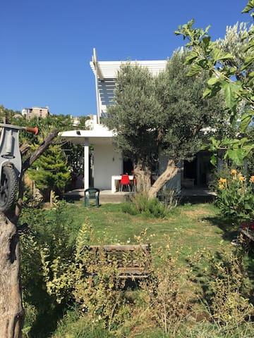 Harika bahçe içinde müstakil  - Bodrum  - Casa