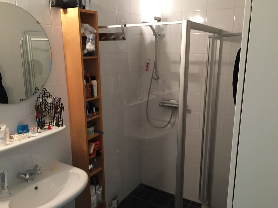 Bathroom with closed shower and two sinks