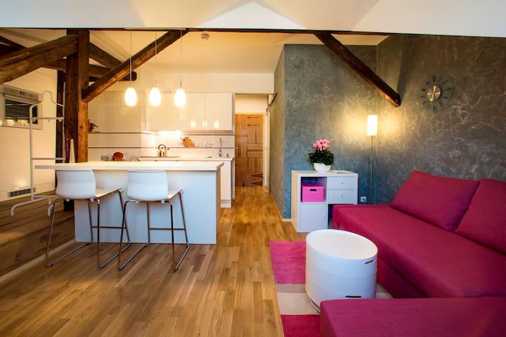 Rezidence Mandragora - Studio 6 - Pardubice - Apartment