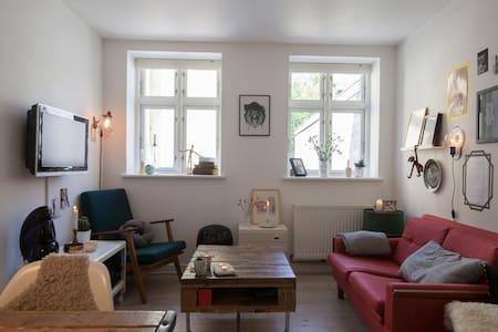 Cozy apartment at Frederiksberg