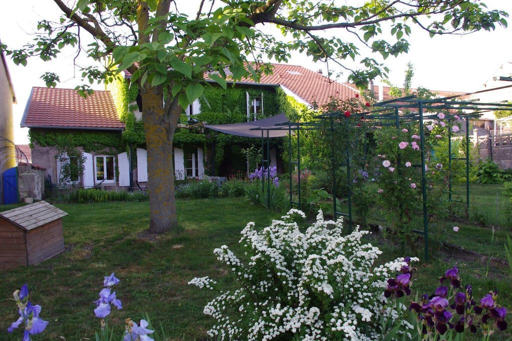 Le jardin, notre havre de paix