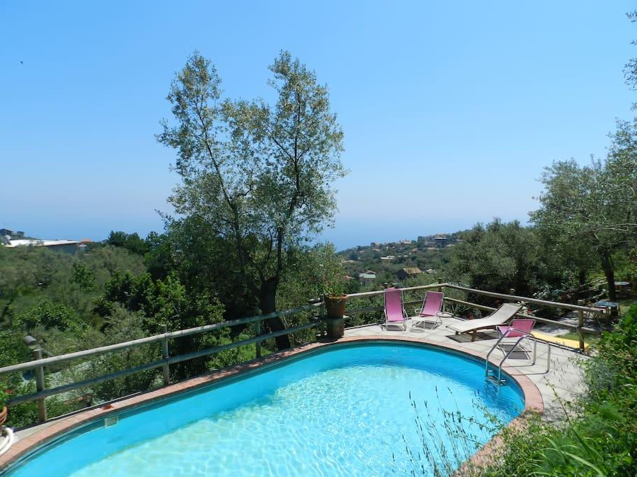 piscina dell'agriturismo accesso libero agli ospiti dell'appartamento terranova