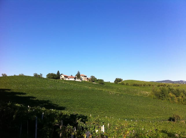 Amazing Langhe and Tasty Red Wine - Dogliani - Appartement