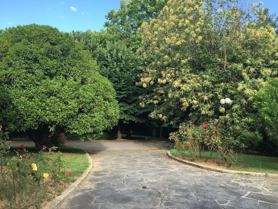 vista del giardino della villa