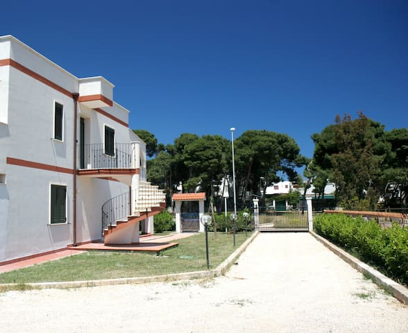 Apartment for rent in Puglia 100 mt from the beach
