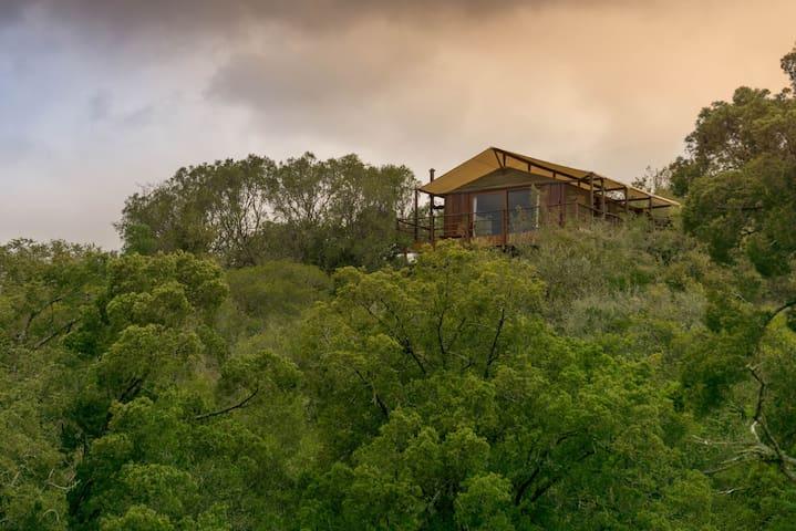 Addo Elephant Lodge and Safaris - Addo - Nature lodge