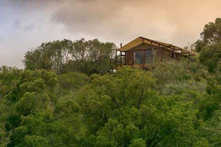 Addo Elephant Lodge and Safaris - Addo - ที่พักธรรมชาติ