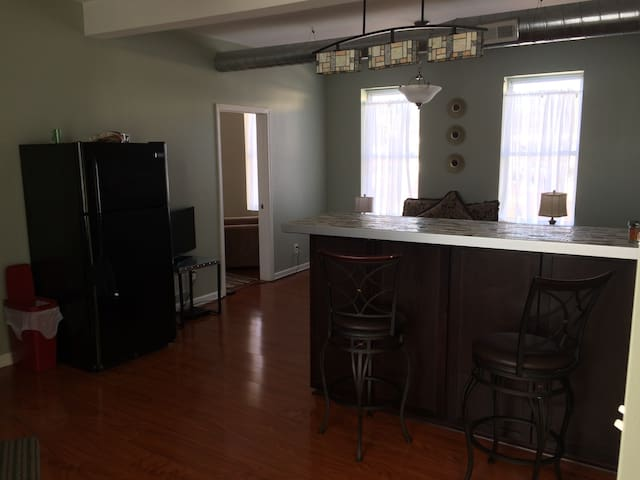 Beautiful Newly Renovated 2BR - Pittsburgh - Leilighet