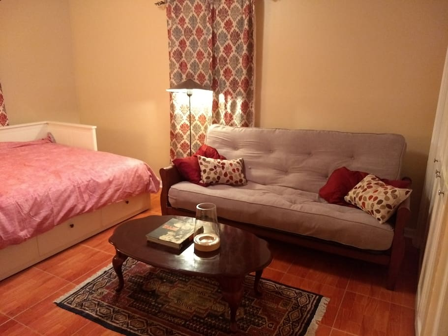 big sturdy futon, with plush mattress, can sleep two
