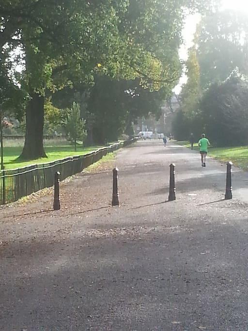 Preston Park on our doorstep