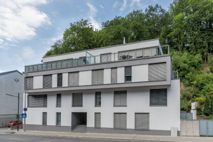 BEAUTIFUL apartment very close to Kirchberg