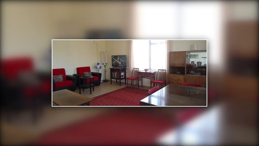 Spacious Sunny flat near Davit Anaht park