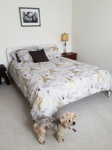 Your queen-sized bed.  Coco and Bella are not allowed here.  Coco is just checking it out.  Please note that Coco has a deep bark but is very sweet and friendly.