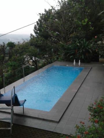 View dari kolam renang