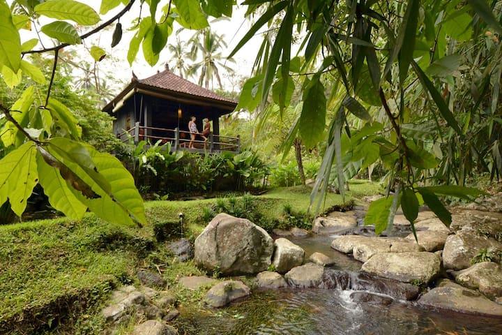 Buddha Bungalow @ Bali Eco Stay - Selemadeg