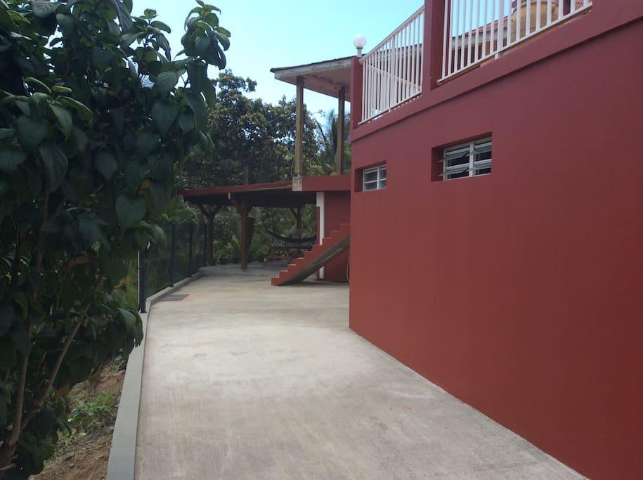Deux pieces dans un jardin tropical maisons louer le for Au jardin tropical guadeloupe