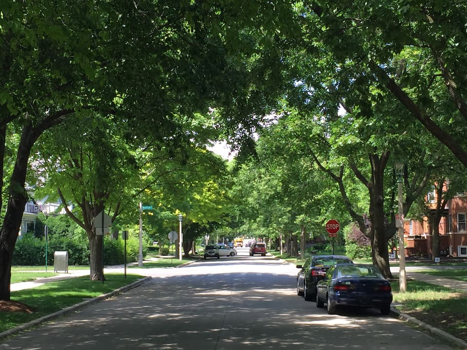 300 Clinton is in the History District and sits on a quiet, tree lined street.