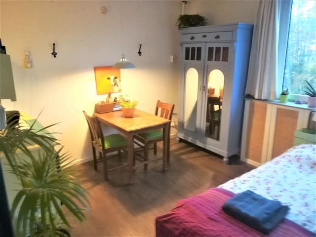 Cozy room .Private; entrance, bathroom and kitchen