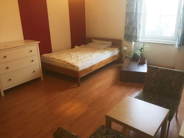 Large 20m² room in the heart of Linz - Linz
