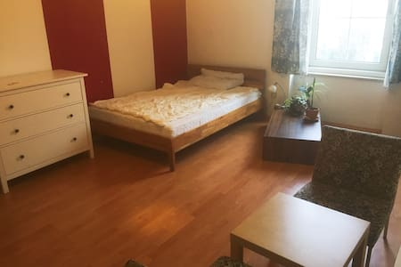 Large 20m² quiet room in the heart of Linz - Linz - Lejlighed