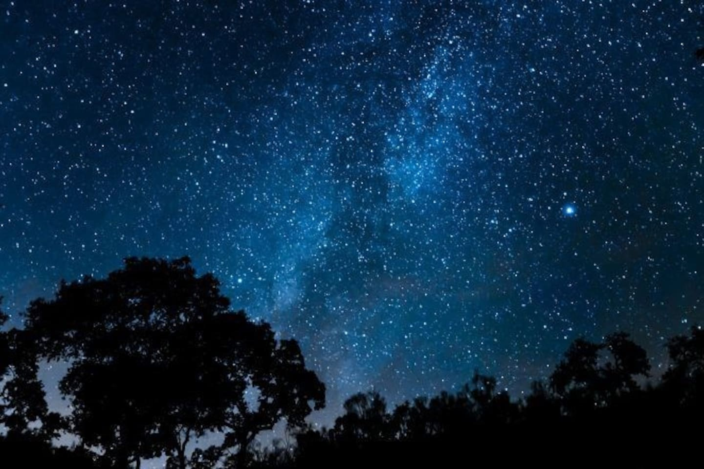 The starry skies above the finca