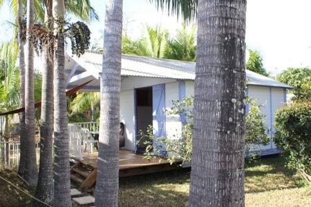 Bungalow avec piscine dans un jardin tropical - Saint-Gilles les Hauts
