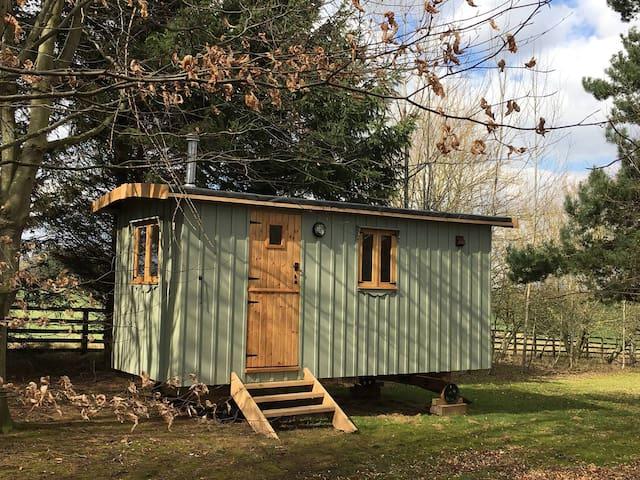 Strawberry Safari Shepherds hut, Harrogate