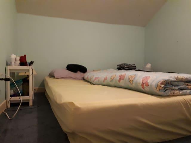 Private Bedroom in the Attic for Girl
