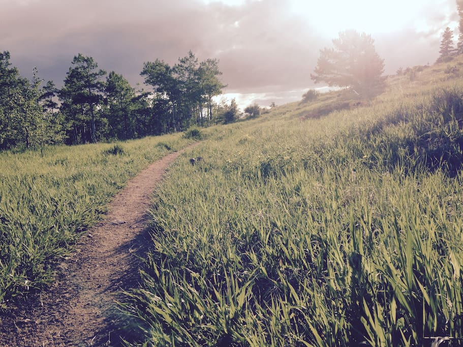Nederland offers a range of outdoor activities and some of the Front Range's most beautiful trails.