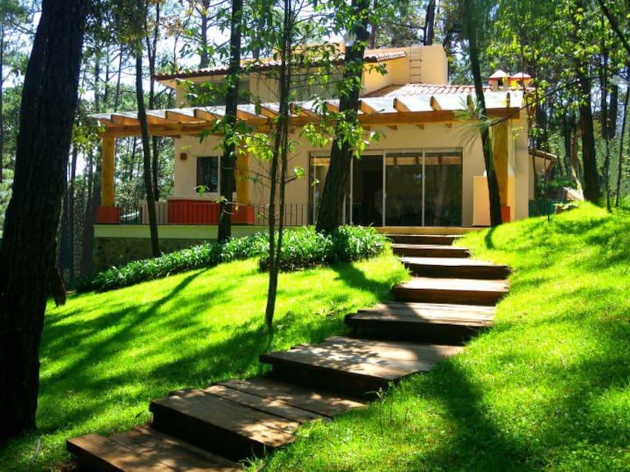 casa vista al bosque